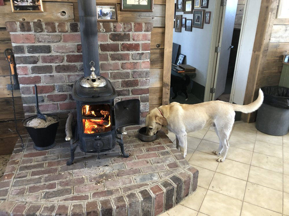 Cooper happy to be back home by the fire at Heritage North.