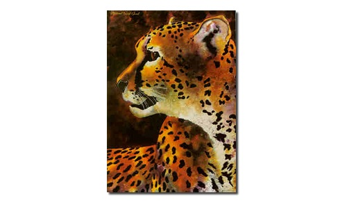cheetah drop shadow ebay.jpg