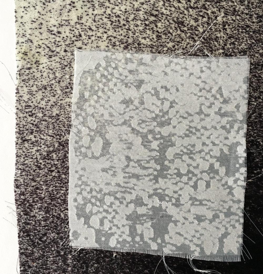 RIKKELEMMING-TEXTILE MICROSCOPE-PIC26.jpg