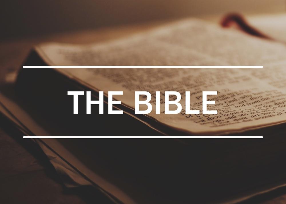 Bible Posts