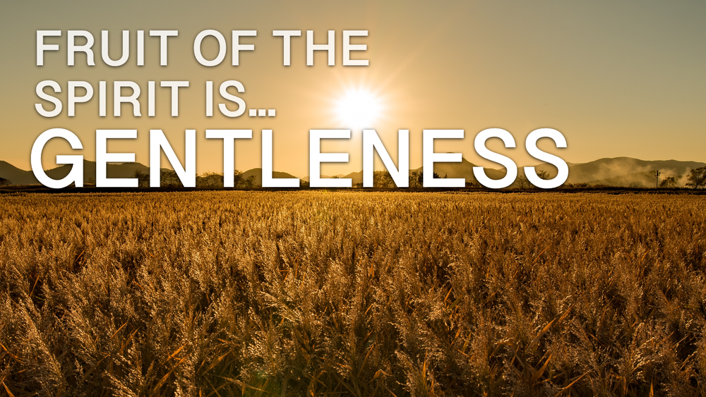 2019-03-04-The-Fruit-Of-The-Spirit-Is-Gentleness.png