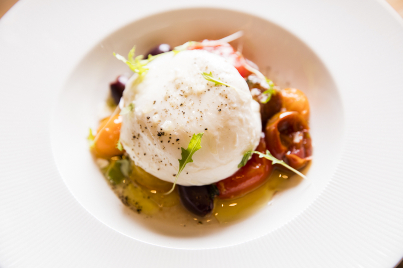GREY SALT BURRATA