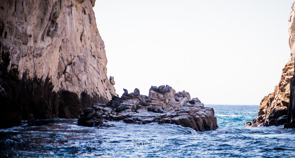 Cabo-1218.jpg