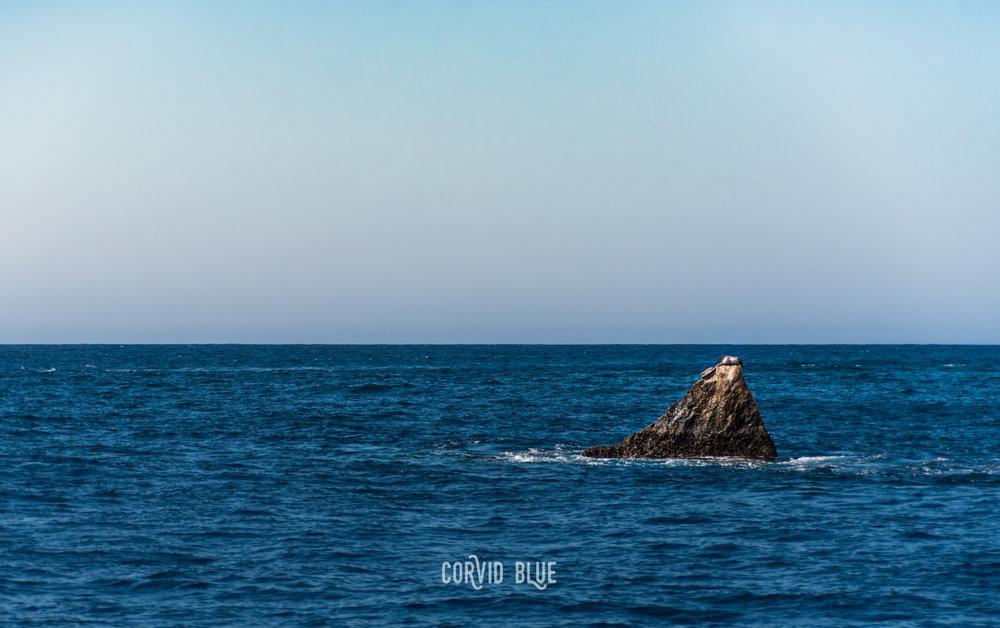 Cabo-1382.jpg