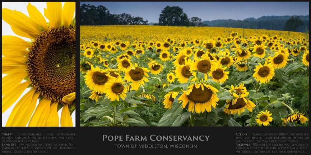 Pope Farm.jpg