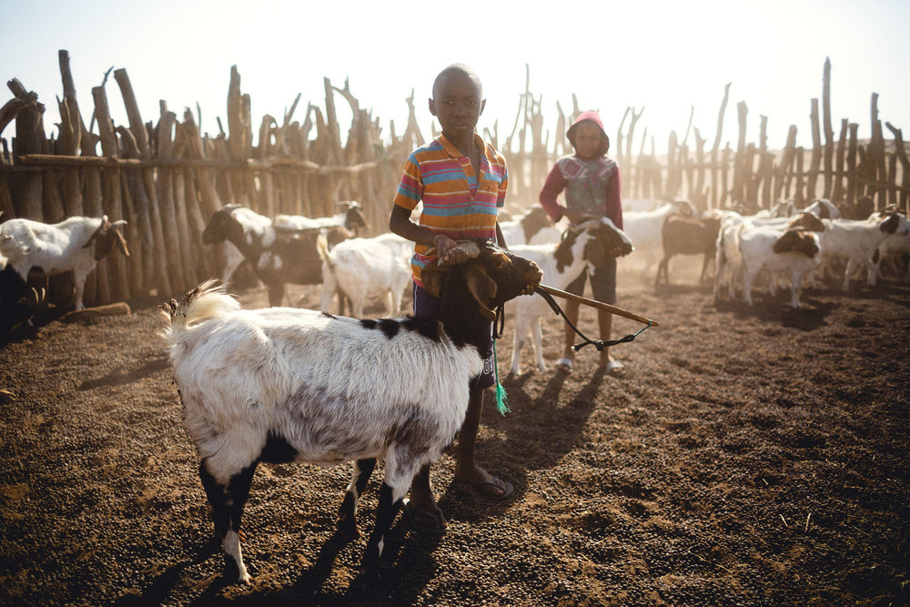 Children from the ≠Aonin Topnaar community tend to their goats.