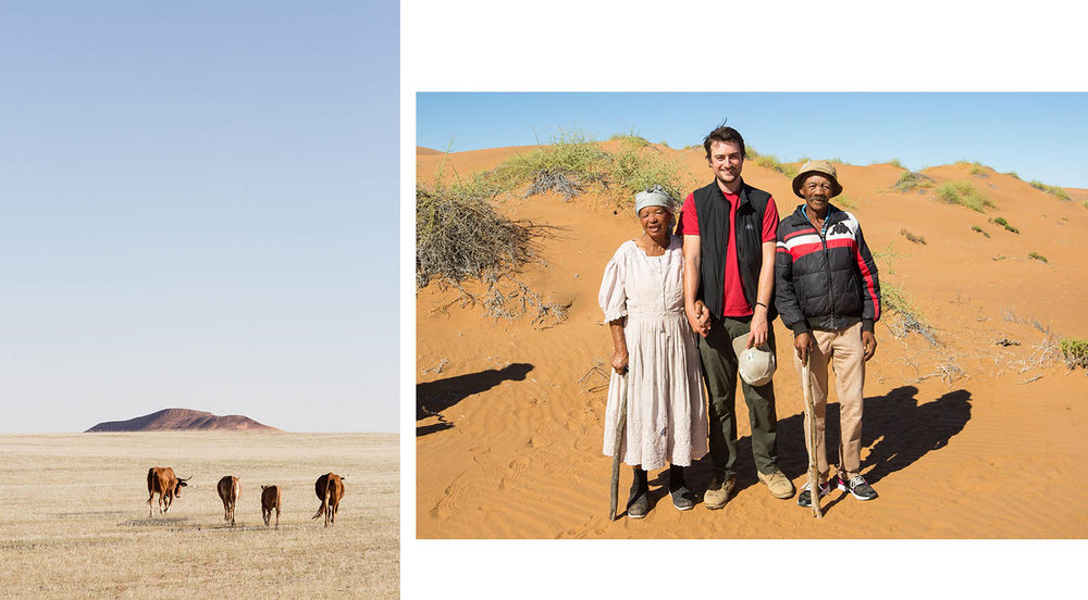 Left: Topnaar cows wander the desert after recent rainfall produces grass. Right: Ouma Anna, myself and Oupa Willem in the dunes after filming the !nara melon harvest