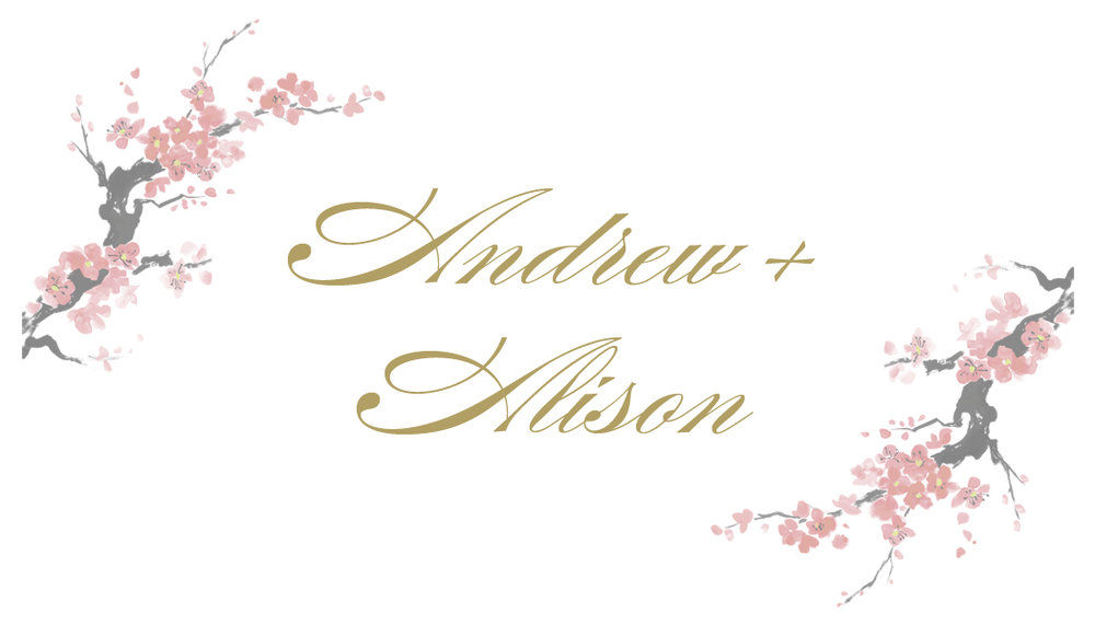 ALISON+ANDREW_thumb.jpg