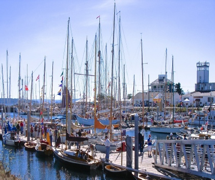 Boats moored at one of our two marinas during the famous  Port Townsend Wooden Boat Festival