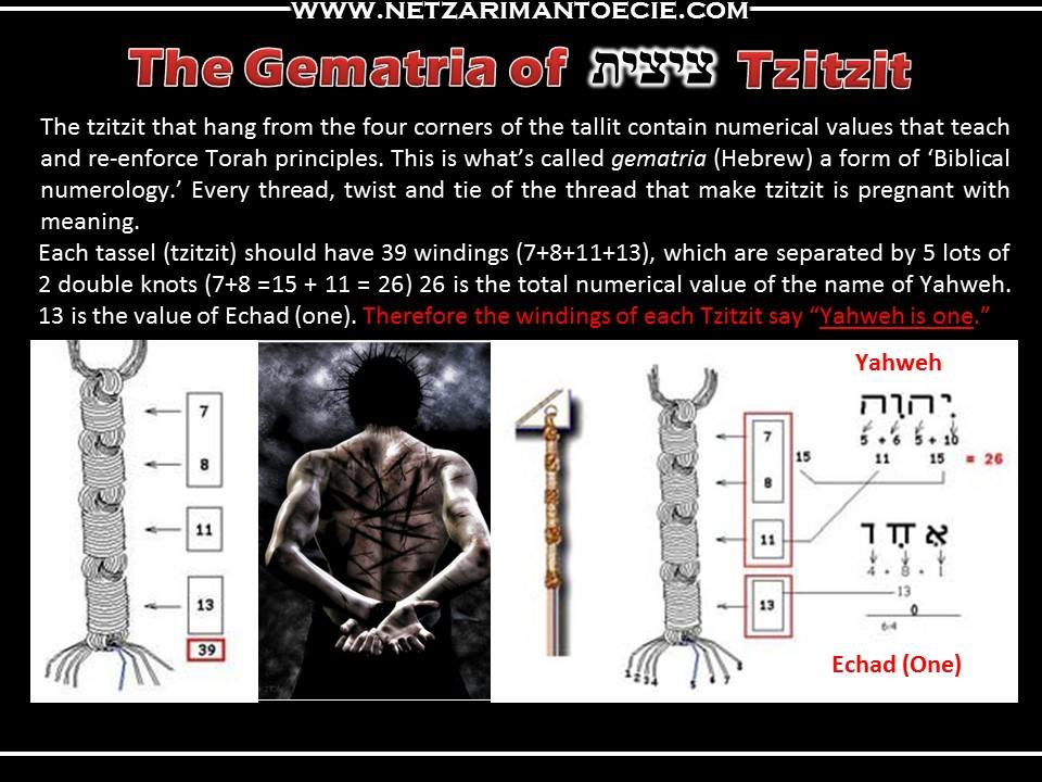 When People Wear Tzitzit They Are Literally Donning The 613 Commandments Of Torah This In Effect Places Spiritual Armour Over All 248 Organs