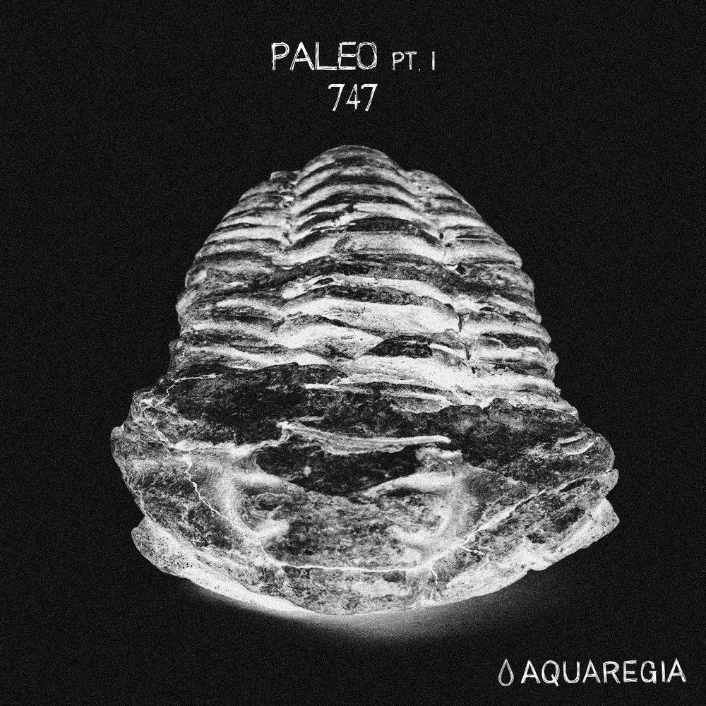 747 - Paleo Pt. I EP [Aquaregia 007]