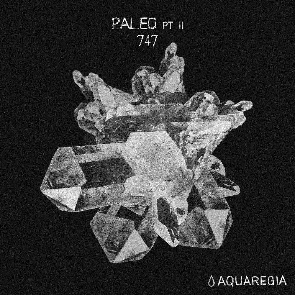 747 - Paleo Pt. II EP [Aquaregia 008]