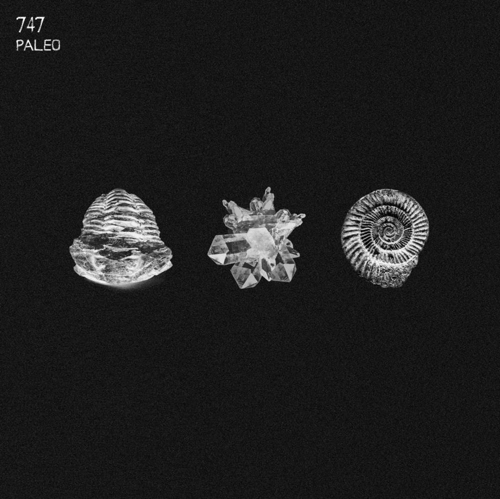"747 - Paleo (2x12"" Vinyl) [AQR010]"