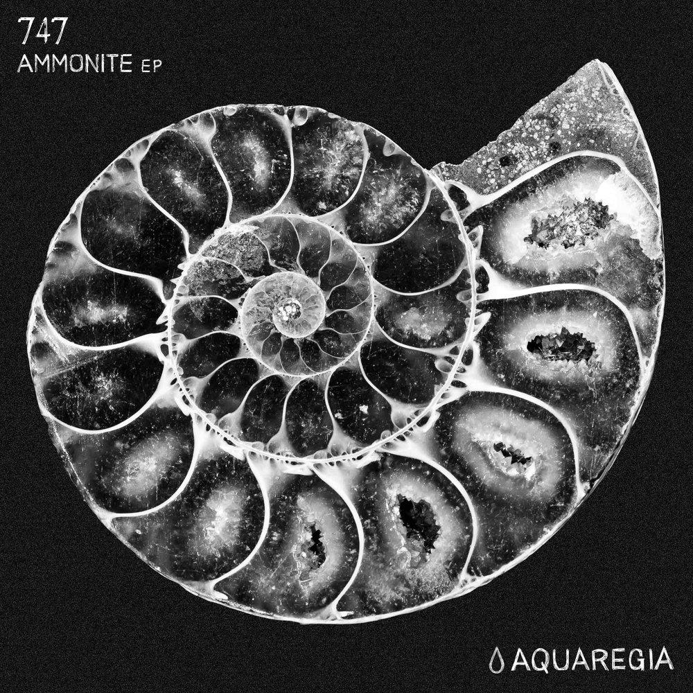 747 - Ammonite EP [Aquaregia 005]