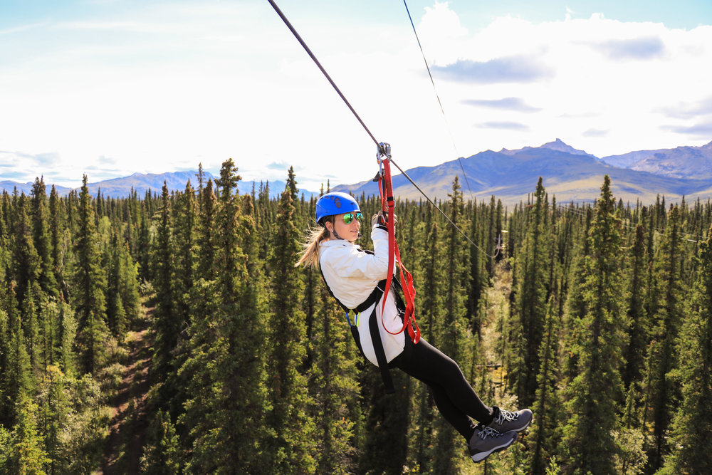 Zip through the boreal forest