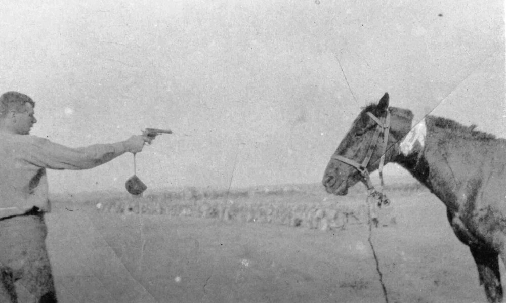 A New Zealand soldier shoots a wounded horse. National Army Museum of New Zealand.