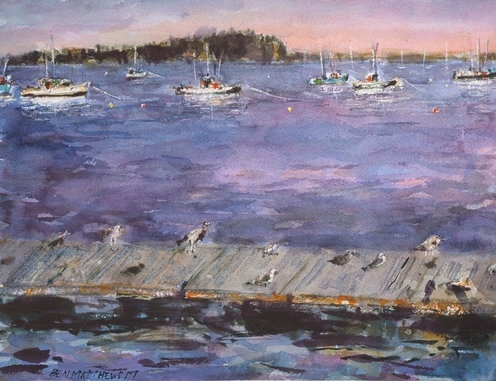 Birds and Boats, Bar Harbor, Maine