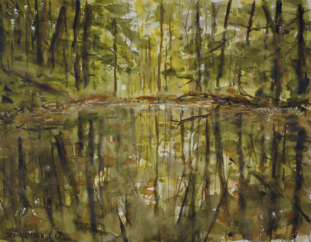 Wooded Reflection, Ohiopyle State Park