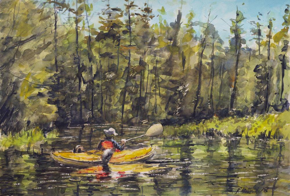 Fish Creek, Saranac Lakes Wilderness Area