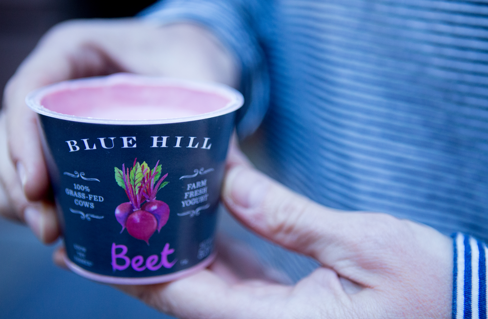Blue Hill Farm Fresh Beet Yogurt, Julie Ann Fineman Photographer