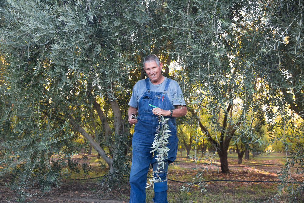 Farmer Al welcomes you to Frog Hollow Farm, Brentwood, CA