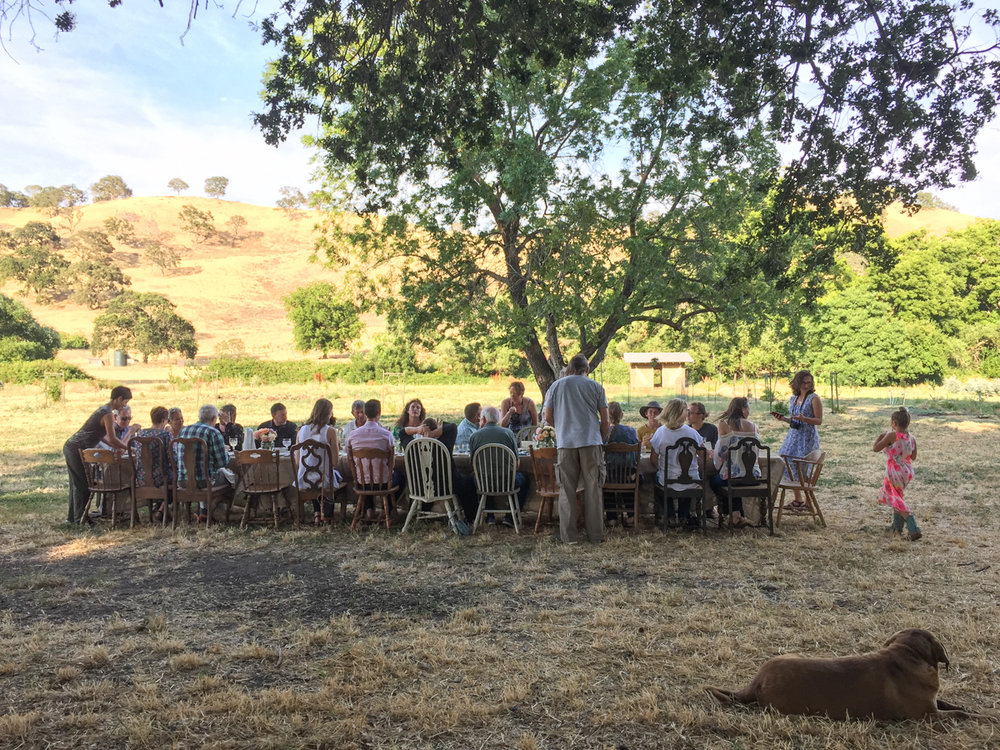 Soul Food Farm's farm to table event on Healing the Ecosystem Through Regenerative Farming