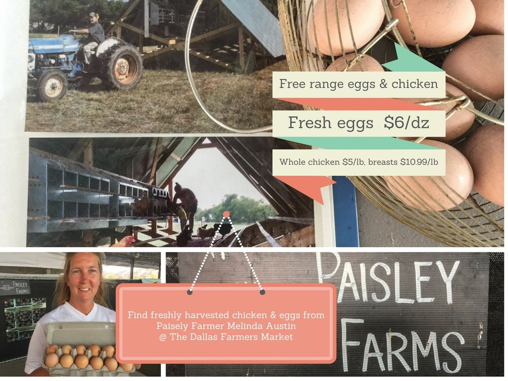 FARMER MELINDA & BOB AUSTIN OF PAISLEY FARMS, BONHAM, TX, CAN ALSO BE FOUND AT: Garland Fire Wheel Town Center on Sundays, St Michaels Farmers Market in Highland Park.  Beyond organically raised chicken and eggs available through December.