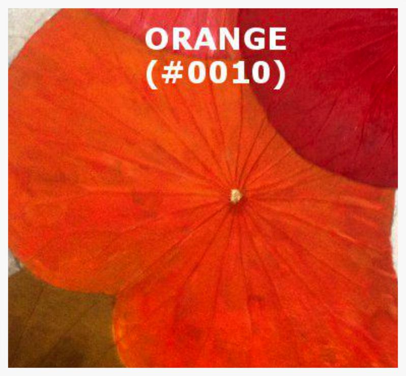 #0010 Orange.png