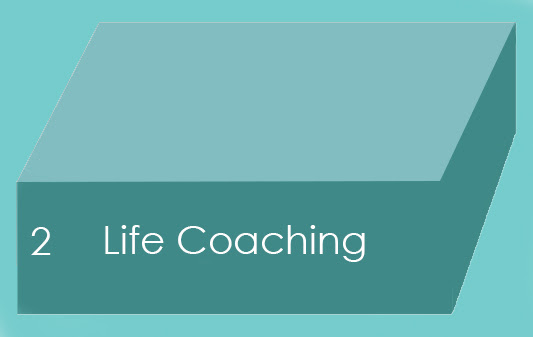 Track 2 - Life Coaching.jpg