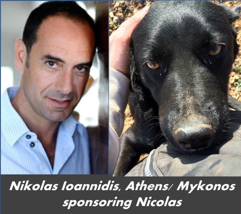 Nicolas Ioannidis Nicolas.jpg