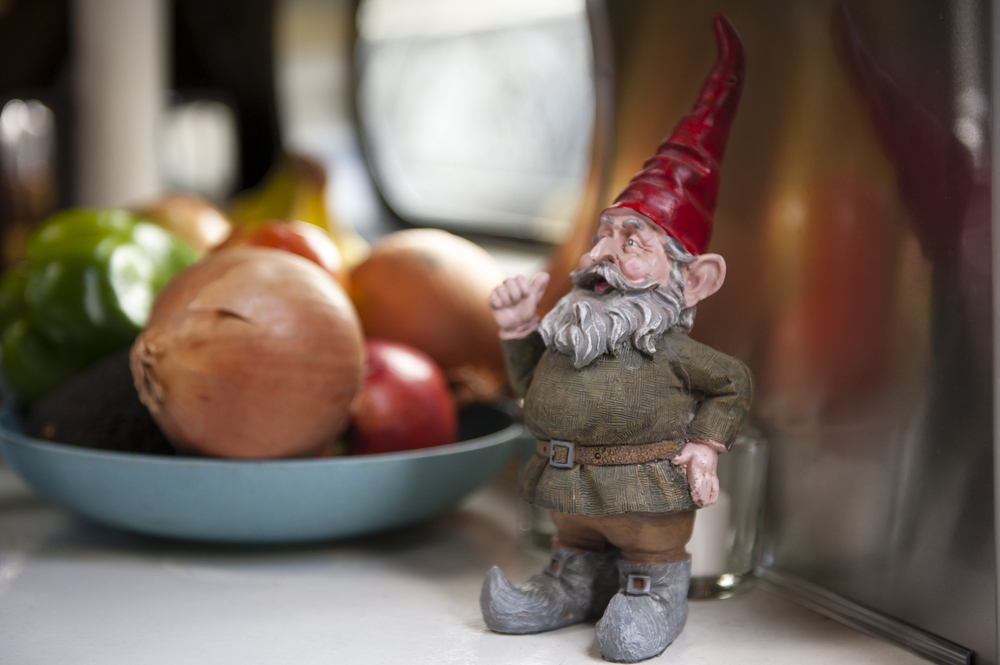 Our trusty gnome has traveled with us from the TAB to the 19 foot airstream to his current home by the door (guarding the fruits and veggies!)