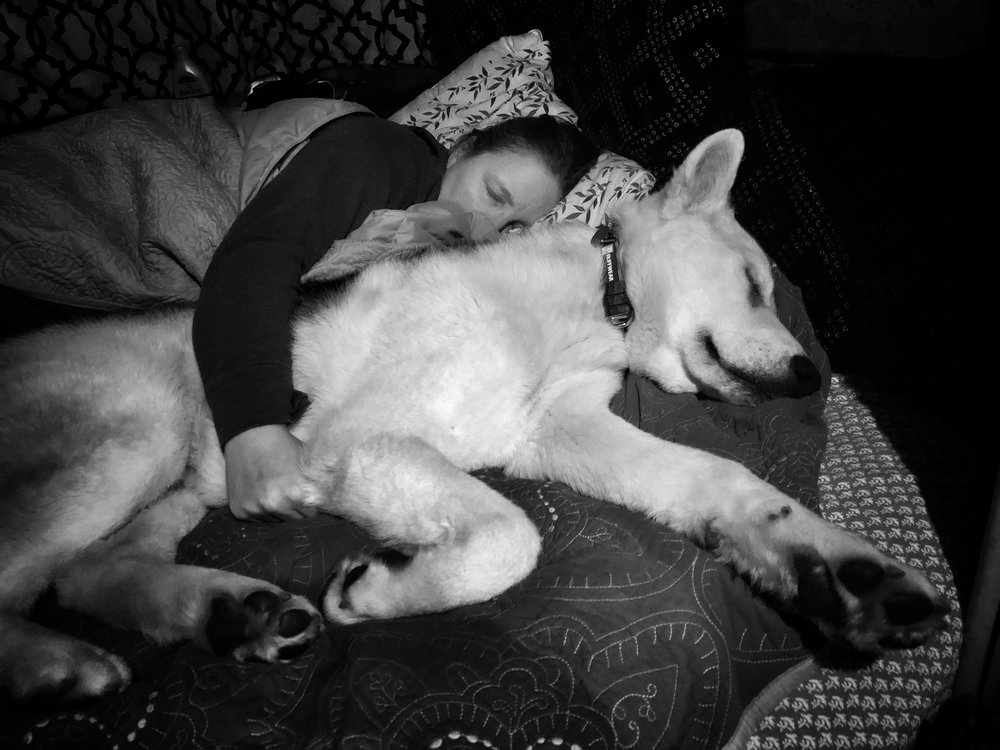 He's a total snuggle-dog (this pic was taken within a week of his adoption).