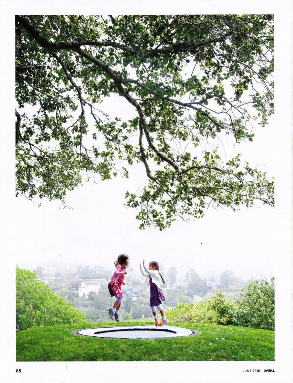 dwell magazine landscaping-05.jpg