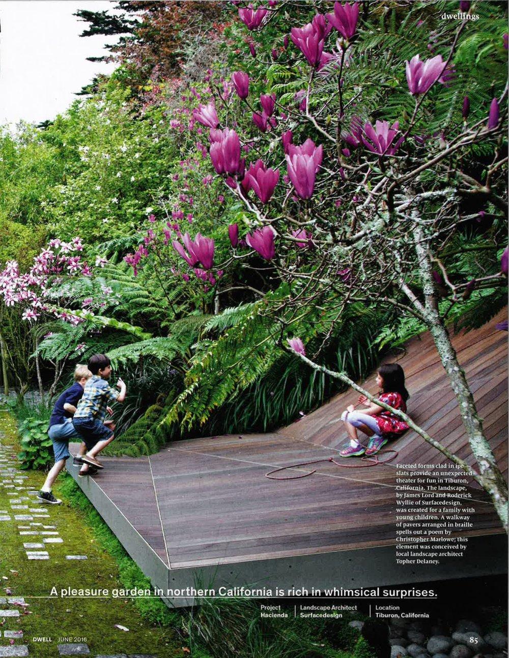 dwell magazine landscaping-07.jpg