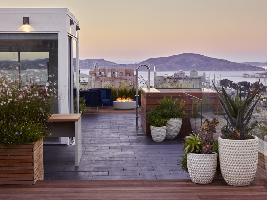 San Francisco Roof Garden