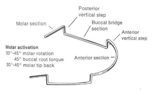 "The Mandibular ""U"" arch"