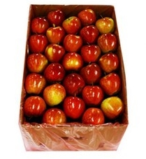 fruit-apple-boxes-250x250.jpg