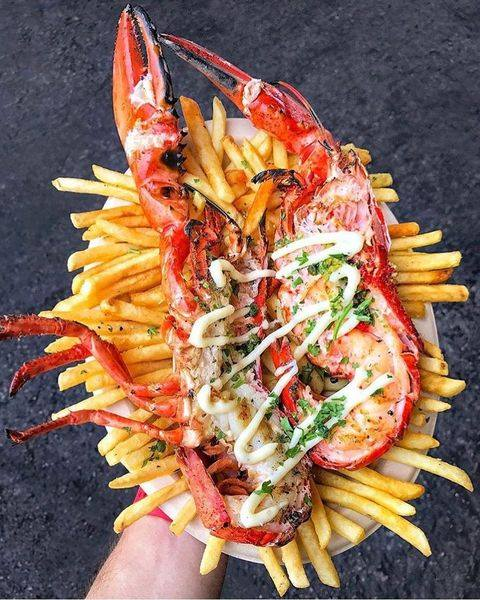 lobsterdamus 1.jpg