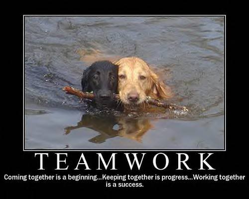 teamwork-coming-together-is-a-beginning-keeping-together-is-progress-working-together-is-a-success
