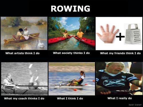 3af9dd96eafc12494905f945230bb931--rowing-memes-rowing-funny.jpg