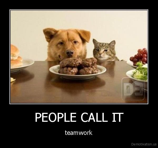 demotivation.us_PEOPLE-CALL-IT-teamwork_13424375454.jpg