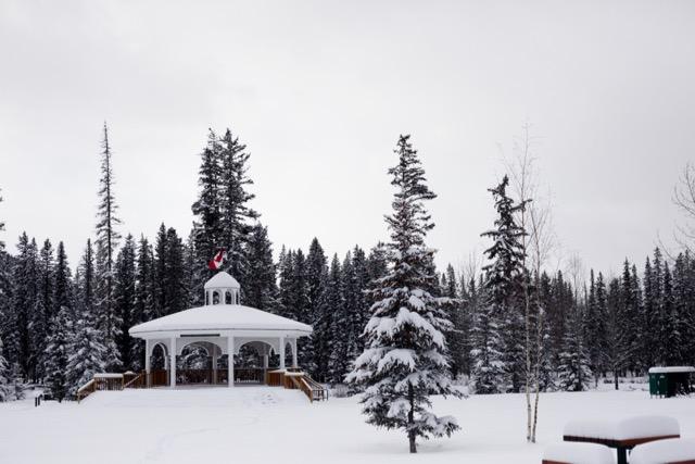 Snowy November day in Banff