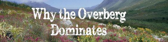 Why the Overberg Dominates.jpg