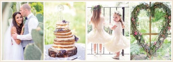 wedding_pic_2v.jpg