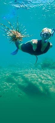 thonga-beach-diving.jpg