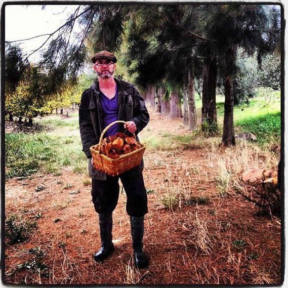 Chris-Erasmus-Foliage.jpg