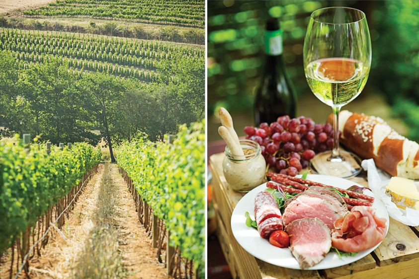 Left: A morning view of the vines. Right: A look inside Warwick's picnic basket