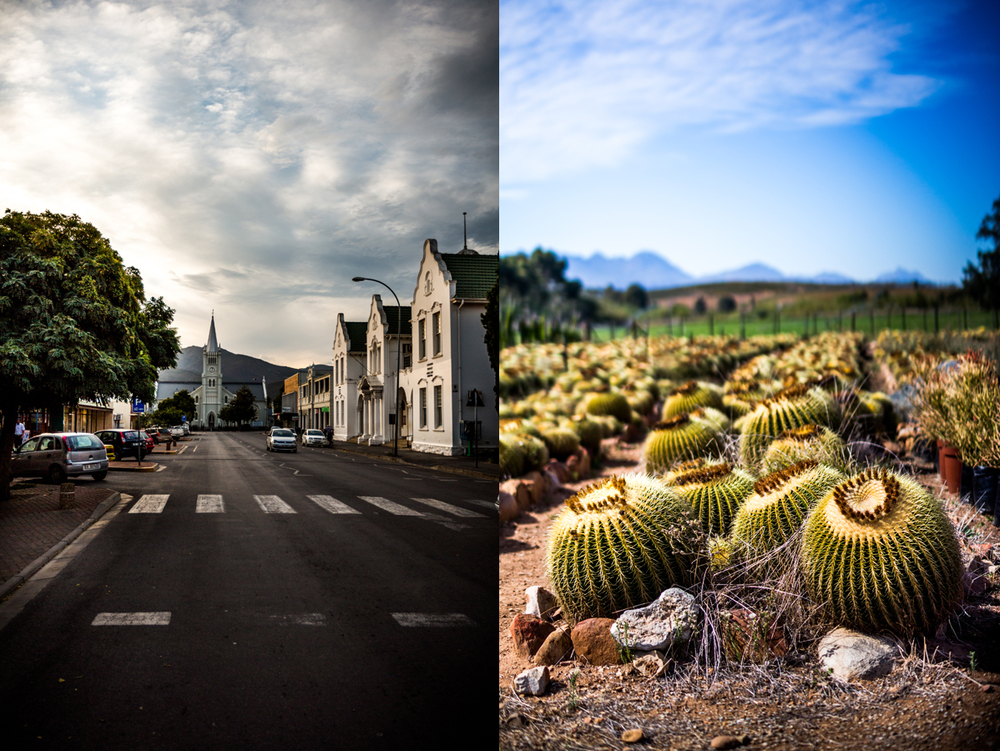 Left: The charming town of Robertson. Right: What a view, at Sheilam Cactus Garden and Succulent Nursery