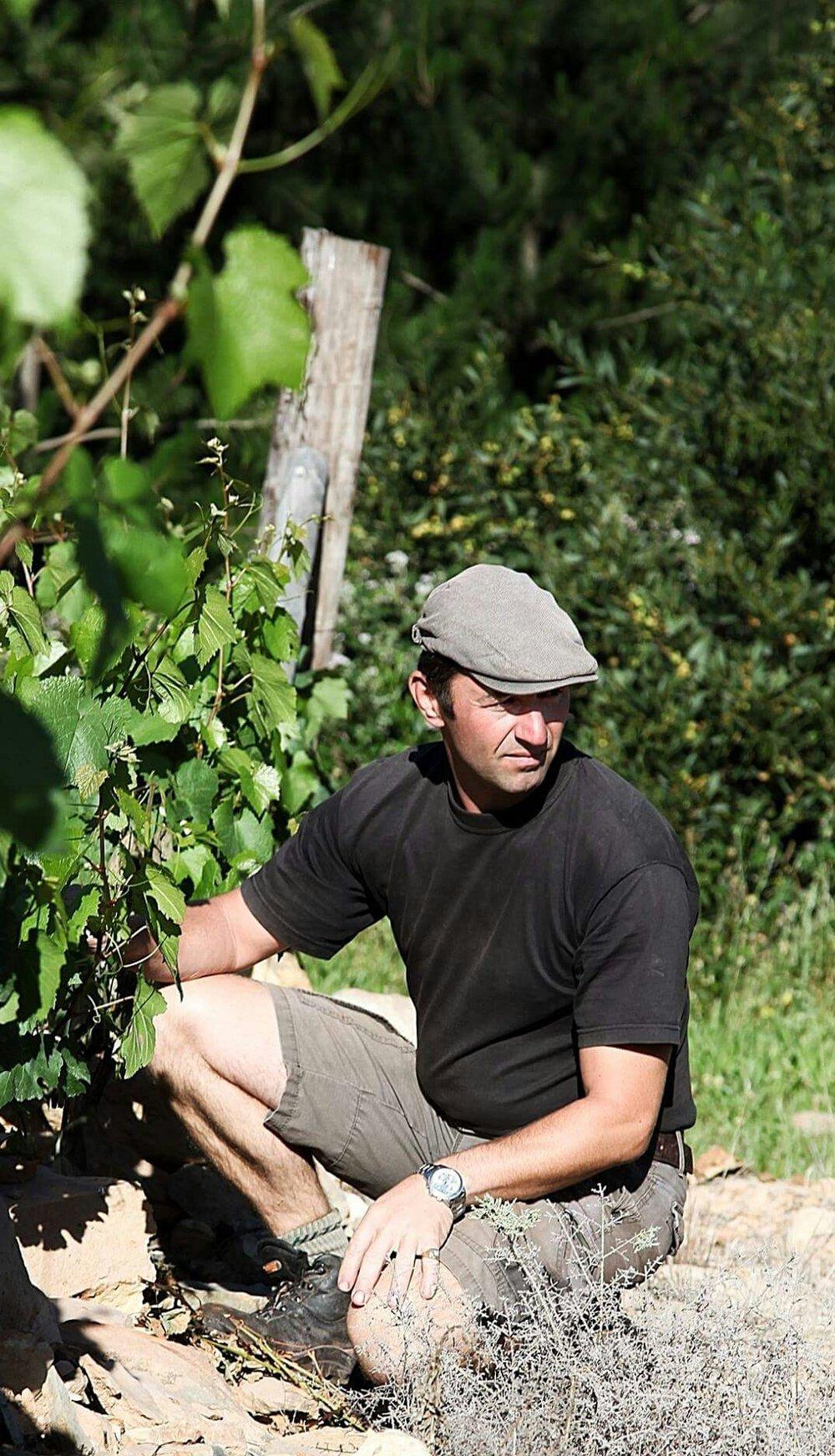 Winemaker Koen Roose