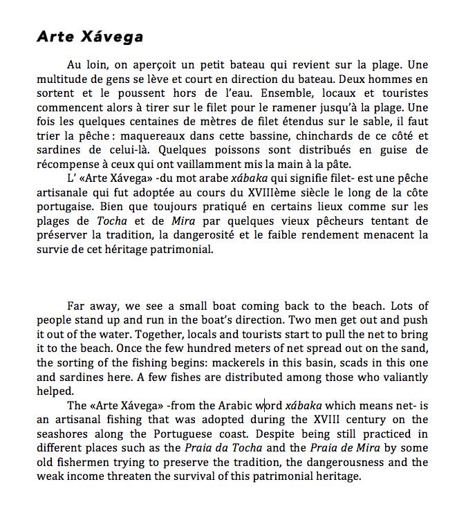Texte Arte Xavega.png